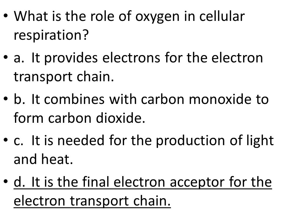 What is the role of oxygen in cellular respiration