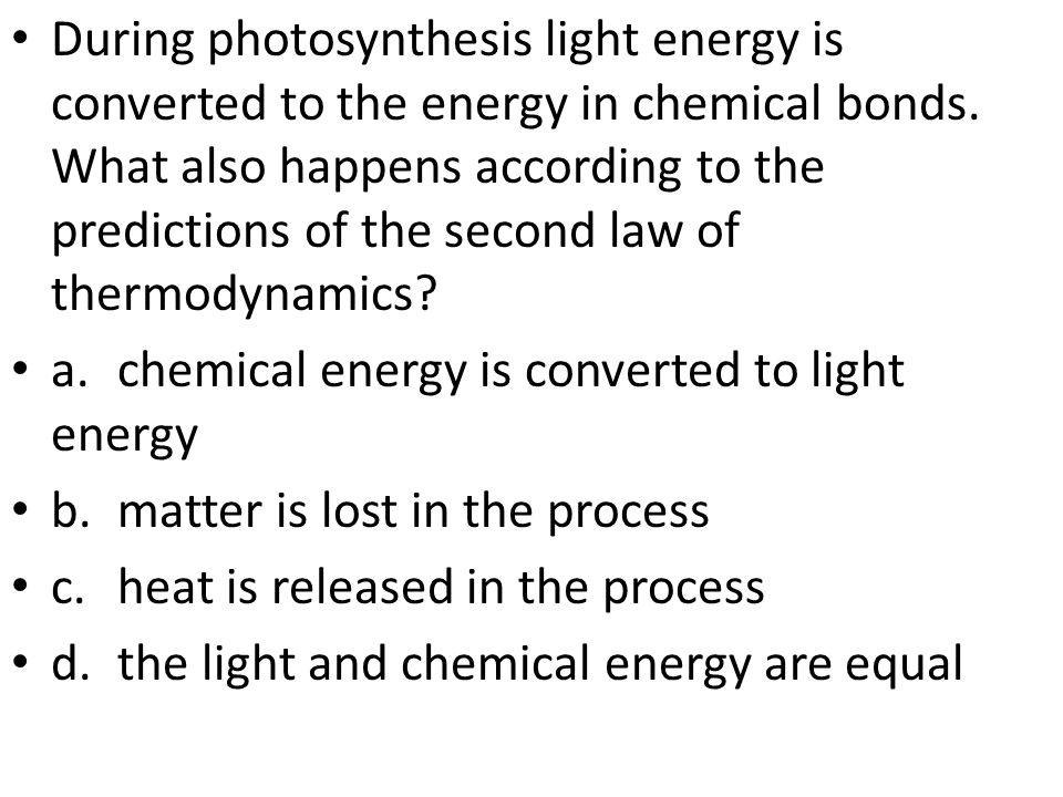 During photosynthesis light energy is converted to the energy in chemical bonds. What also happens according to the predictions of the second law of thermodynamics