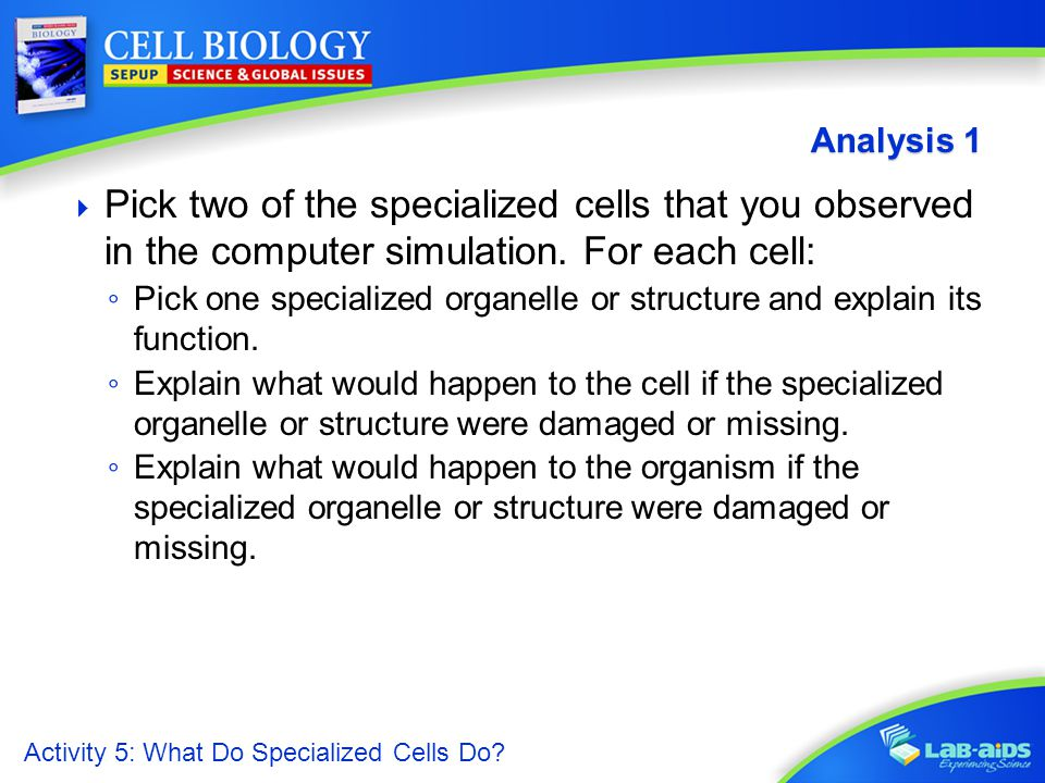 what are specialized cells