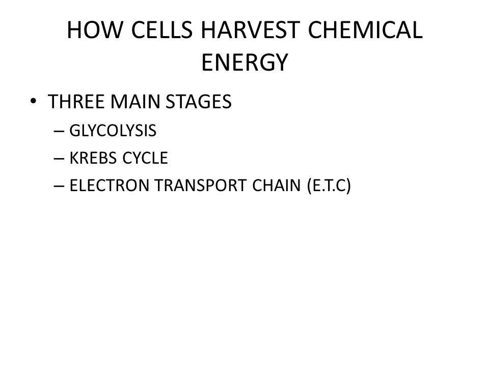 HOW CELLS HARVEST CHEMICAL ENERGY
