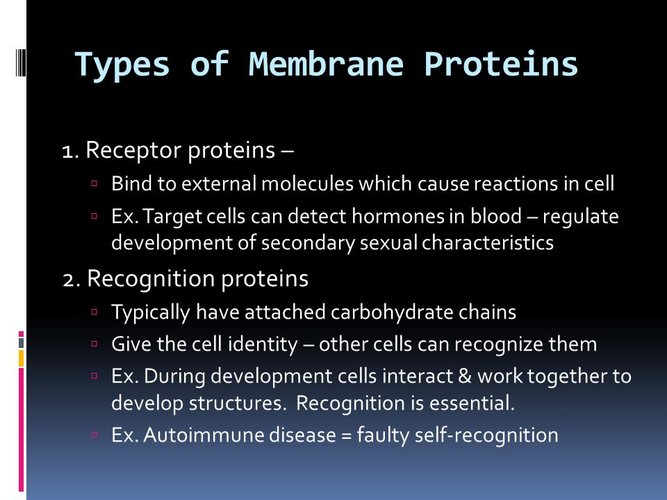 Types of Membrane Proteins