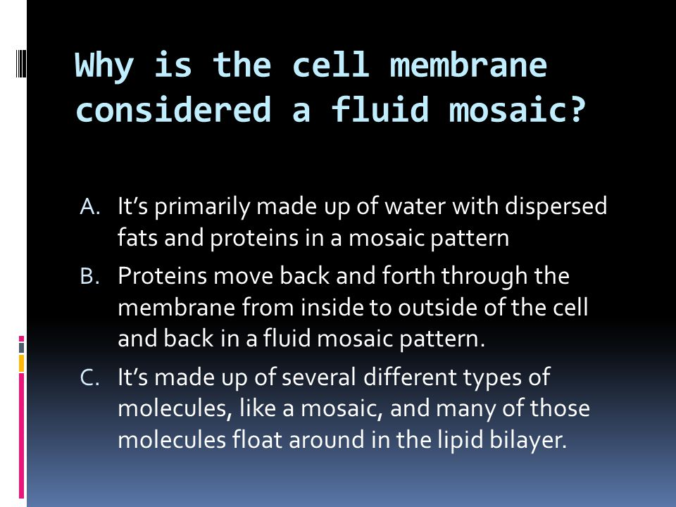 Why is the cell membrane considered a fluid mosaic
