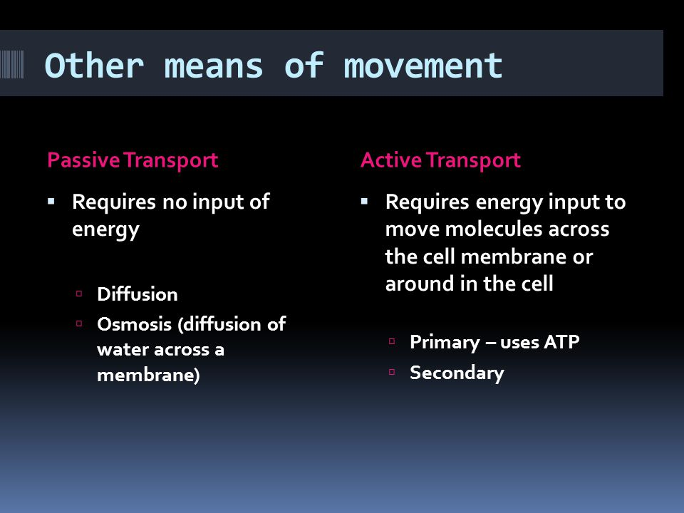 Other means of movement