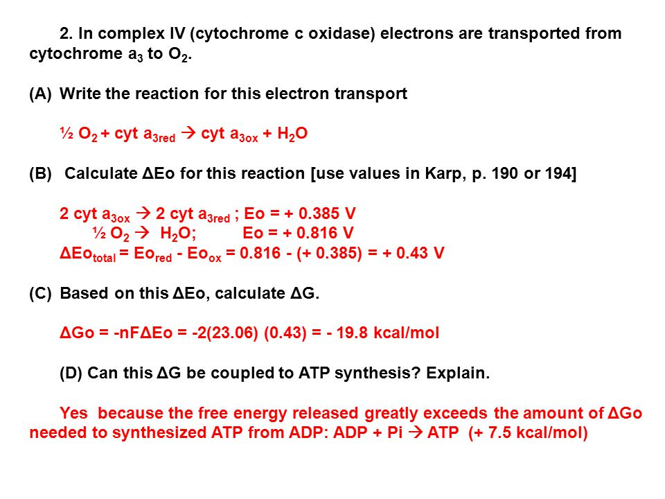 2. In complex IV (cytochrome c oxidase) electrons are transported from cytochrome a3 to O2.