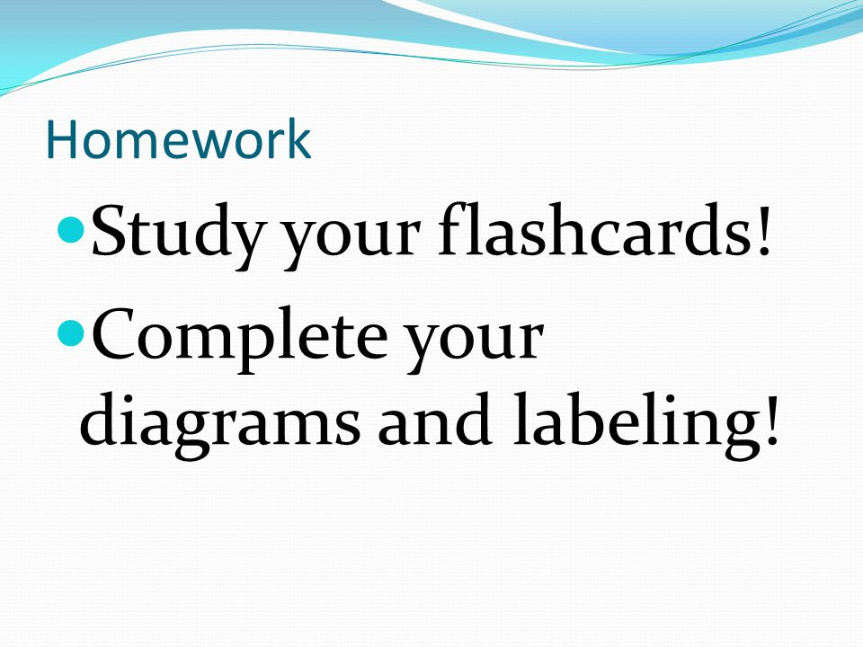 Complete your diagrams and labeling!