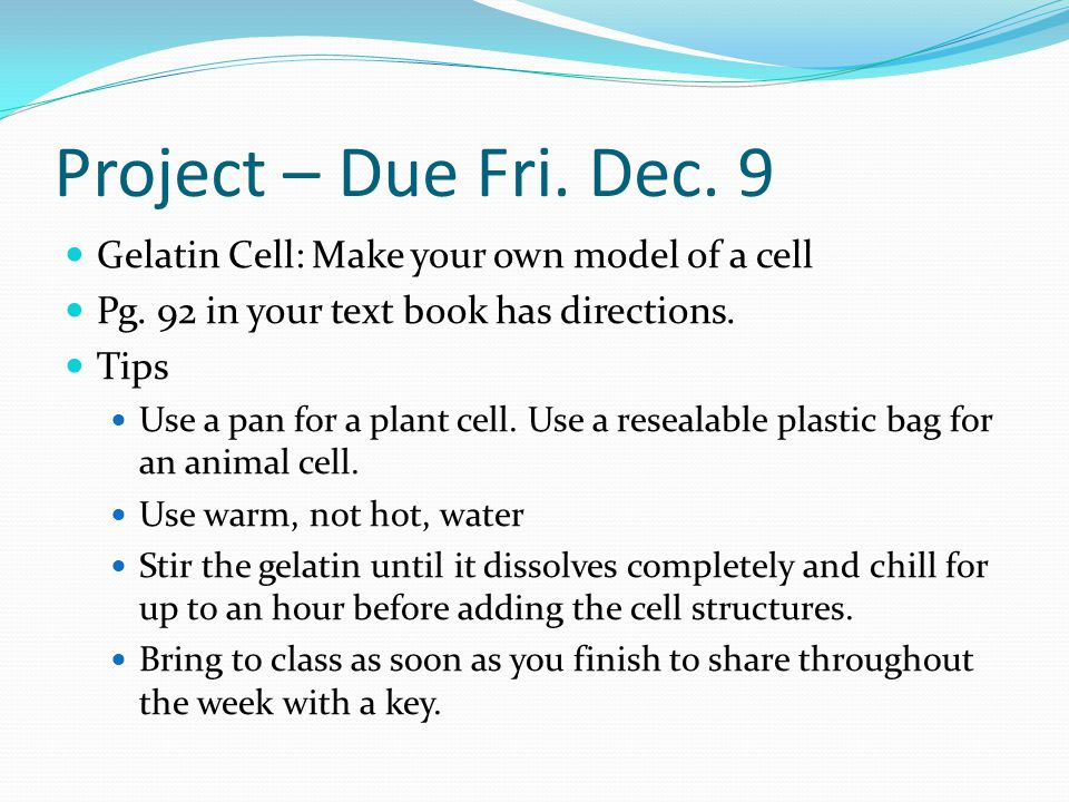 Project – Due Fri. Dec. 9 Gelatin Cell: Make your own model of a cell