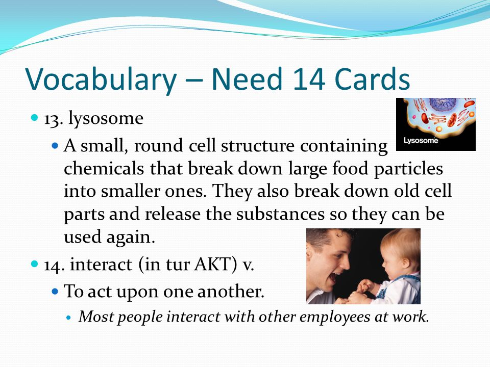 Vocabulary – Need 14 Cards