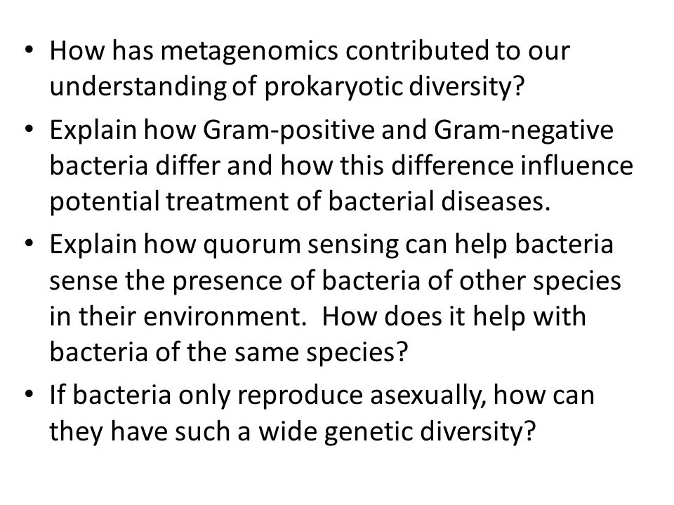 How has metagenomics contributed to our understanding of prokaryotic diversity