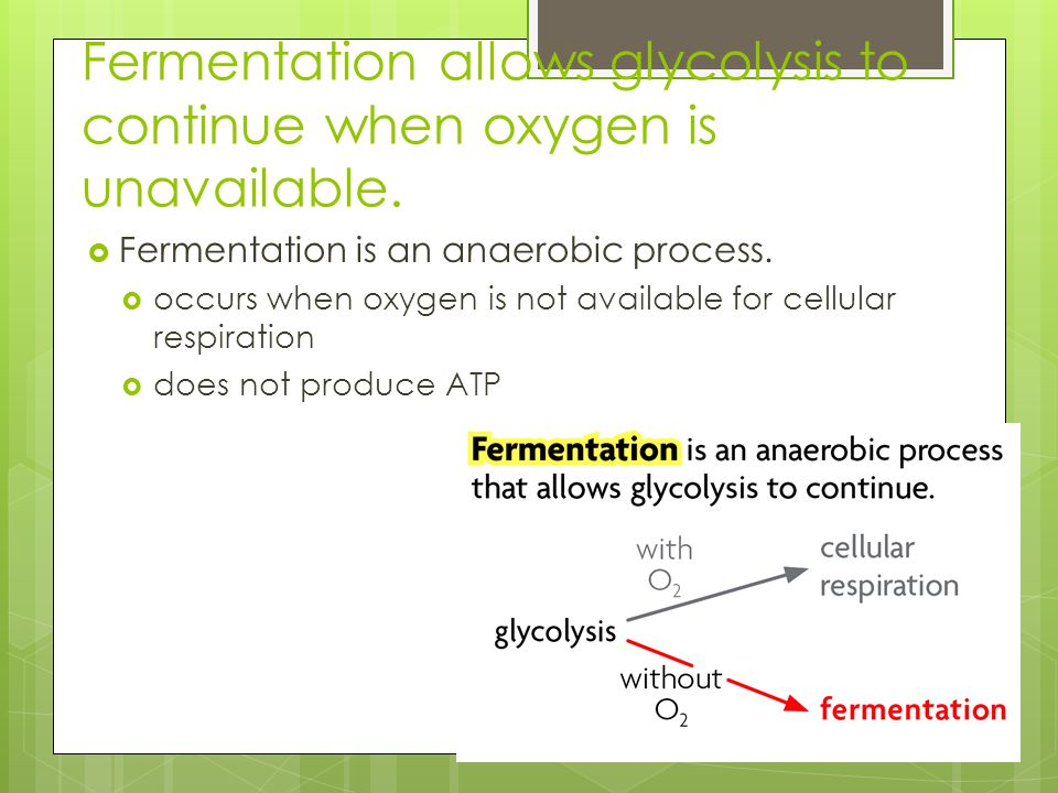 Fermentation allows glycolysis to continue when oxygen is unavailable.
