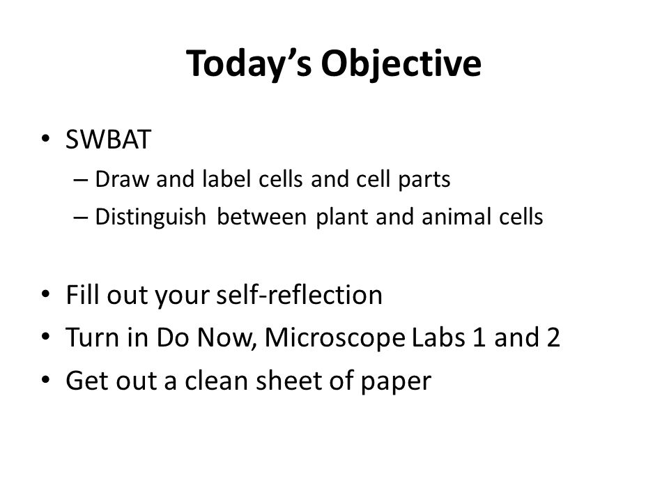 Today's Objective SWBAT Fill out your self-reflection