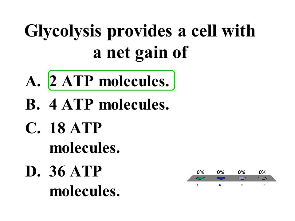 Glycolysis provides a cell with a net gain of