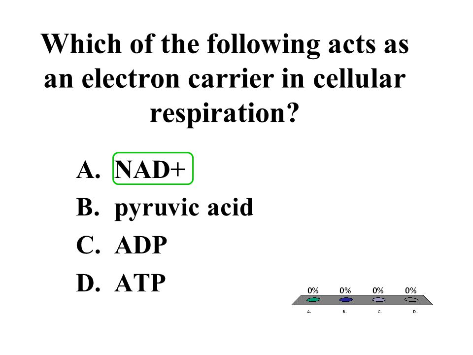 Which of the following acts as an electron carrier in cellular respiration