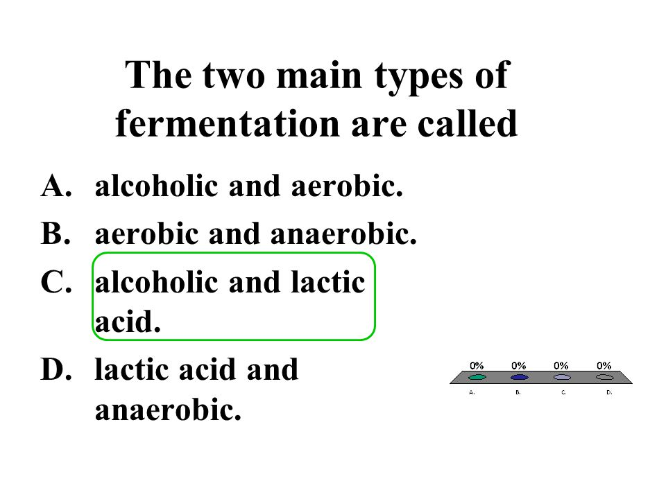 The two main types of fermentation are called