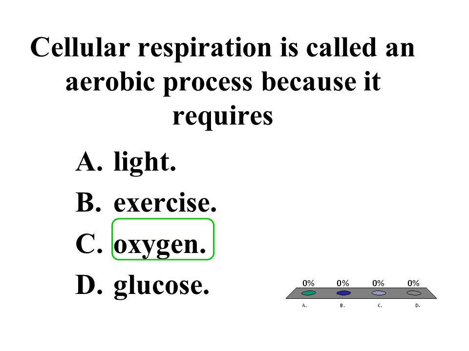 Cellular respiration is called an aerobic process because it requires