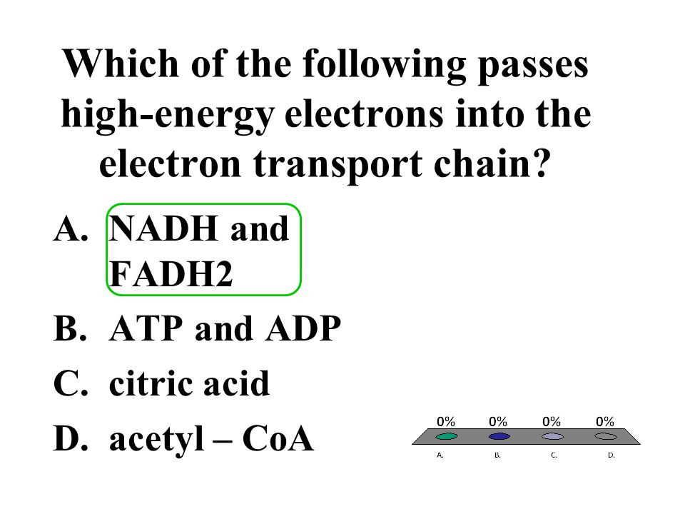 Which of the following passes high-energy electrons into the electron transport chain