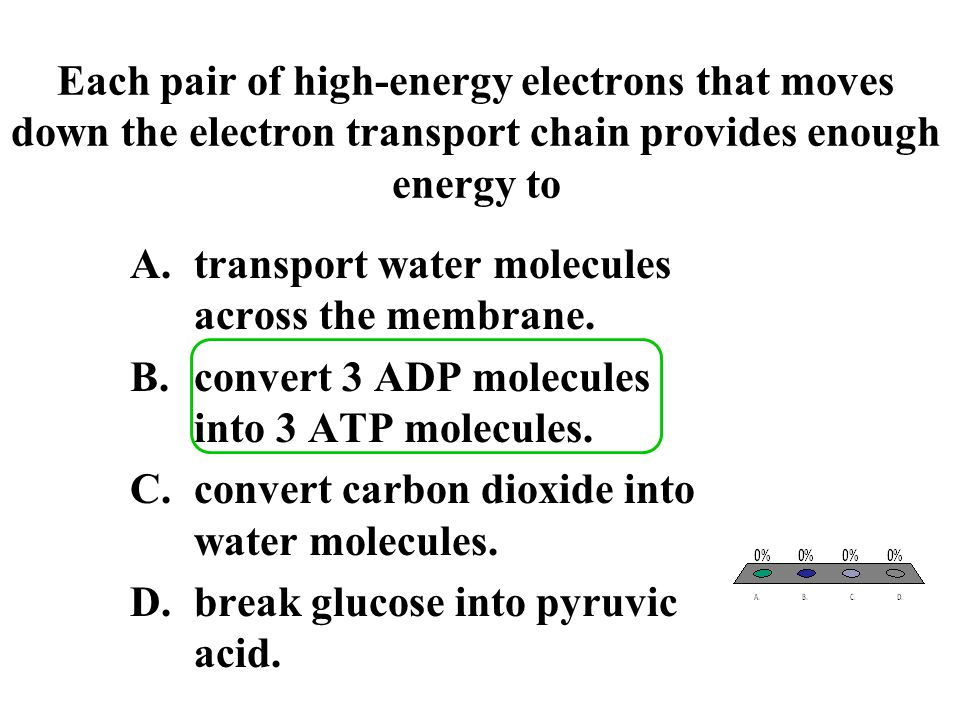 Each pair of high-energy electrons that moves down the electron transport chain provides enough energy to
