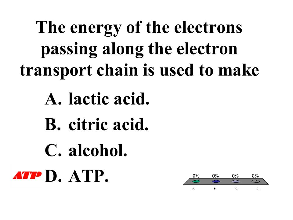 The energy of the electrons passing along the electron transport chain is used to make