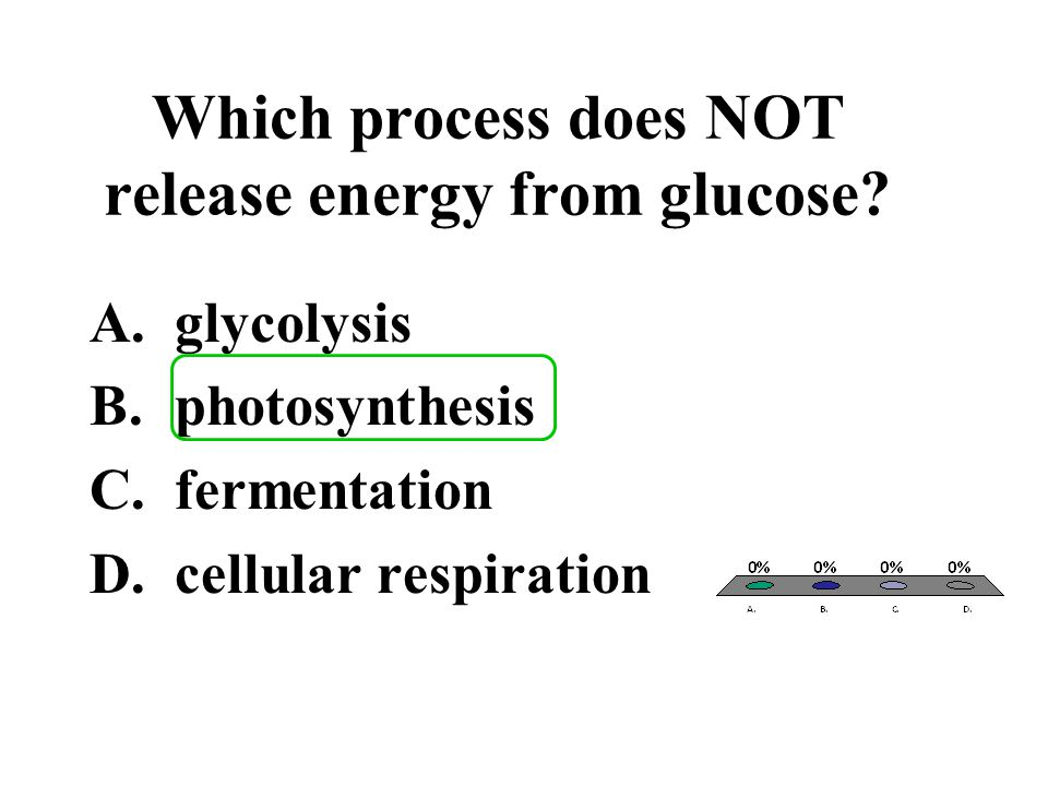 Which process does NOT release energy from glucose