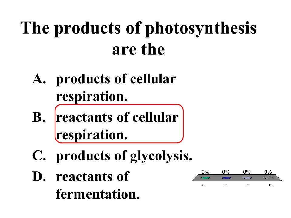 The products of photosynthesis are the