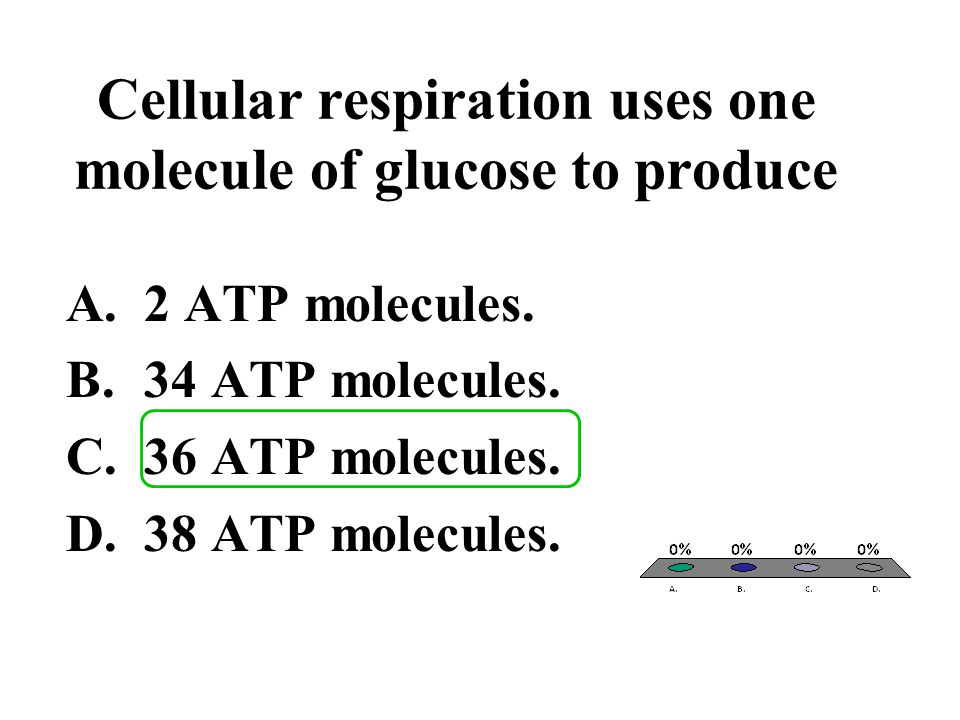 Cellular respiration uses one molecule of glucose to produce