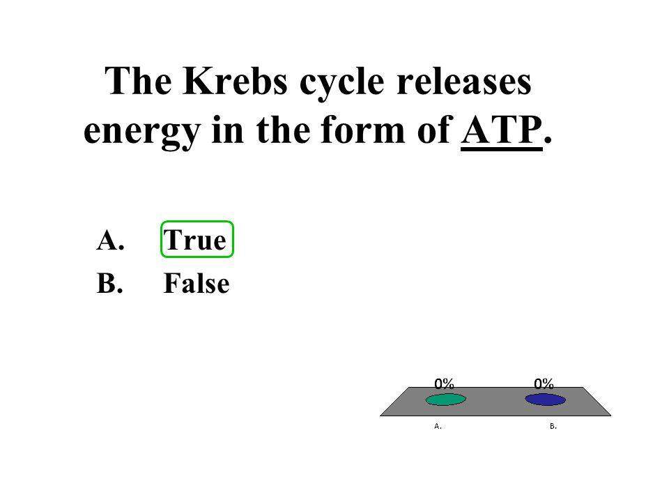 The Krebs cycle releases energy in the form of ATP.