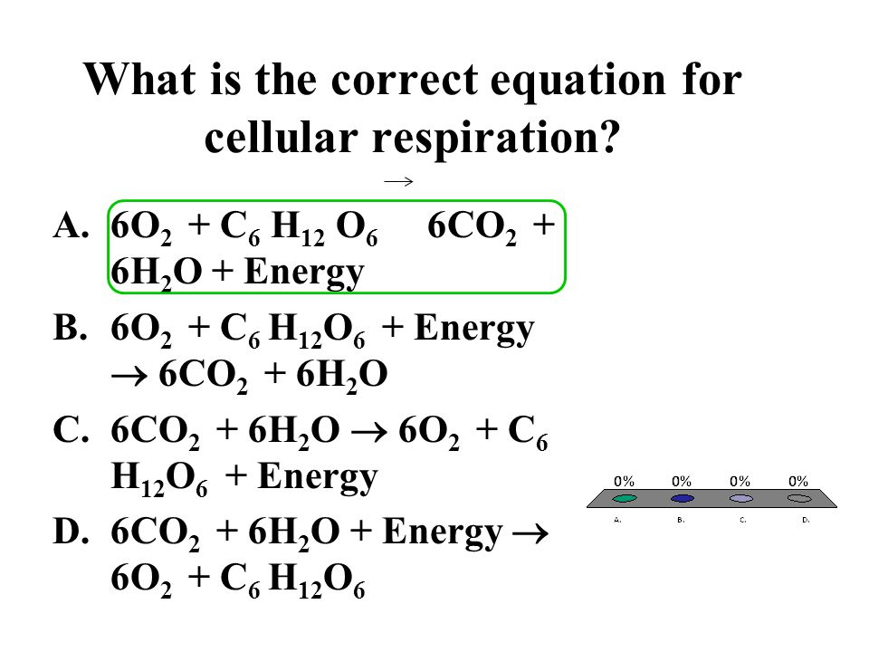 What is the correct equation for cellular respiration