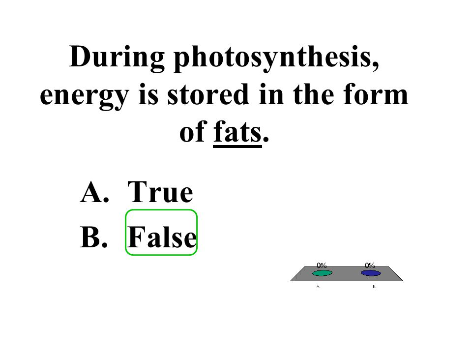 During photosynthesis, energy is stored in the form of fats.