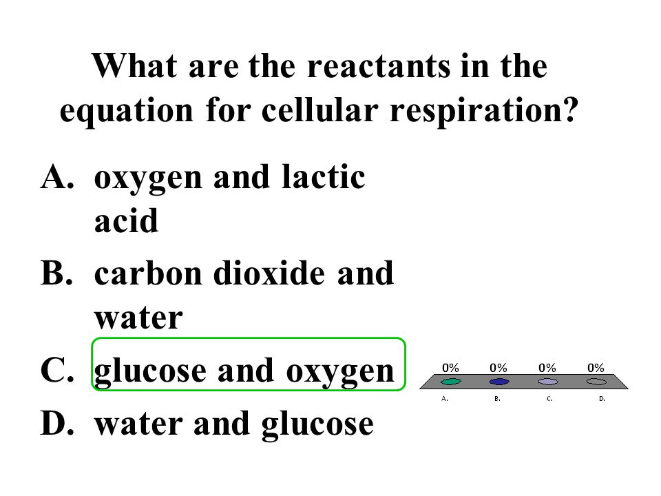 What are the reactants in the equation for cellular respiration