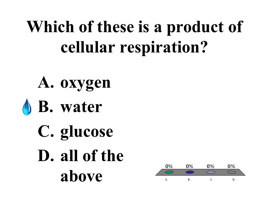 Which of these is a product of cellular respiration