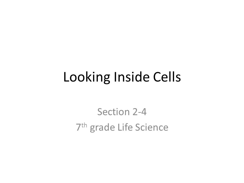 Section 2-4 7th grade Life Science