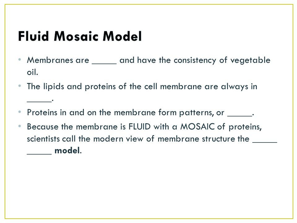 Fluid Mosaic Model Membranes are _____ and have the consistency of vegetable oil. The lipids and proteins of the cell membrane are always in _____.