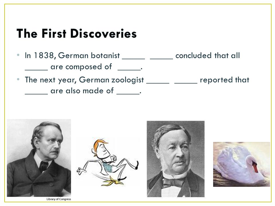 The First Discoveries In 1838, German botanist _____ _____ concluded that all _____ are composed of _____.