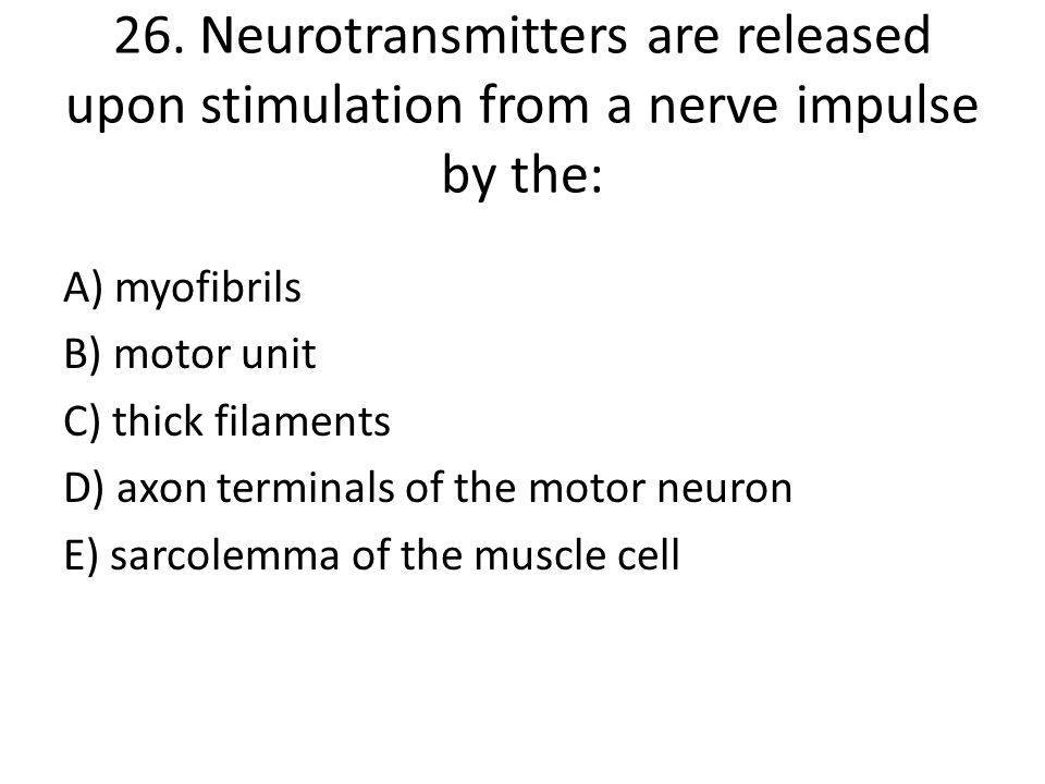 26. Neurotransmitters are released upon stimulation from a nerve impulse by the: