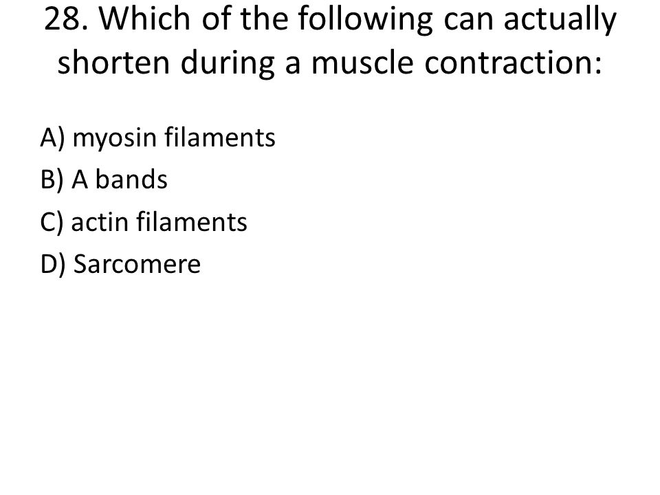 28. Which of the following can actually shorten during a muscle contraction: