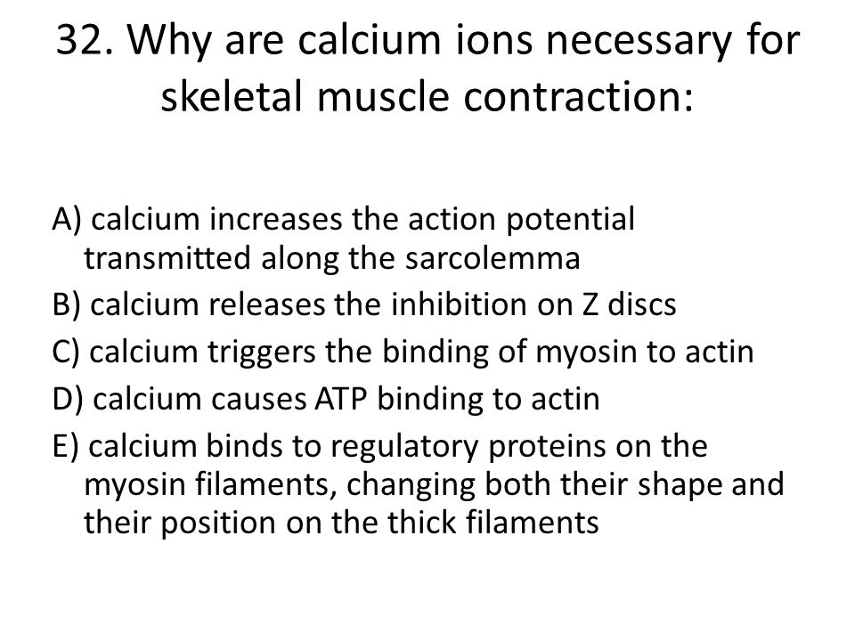 32. Why are calcium ions necessary for skeletal muscle contraction: