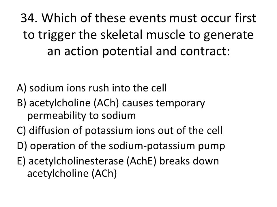34. Which of these events must occur first to trigger the skeletal muscle to generate an action potential and contract: