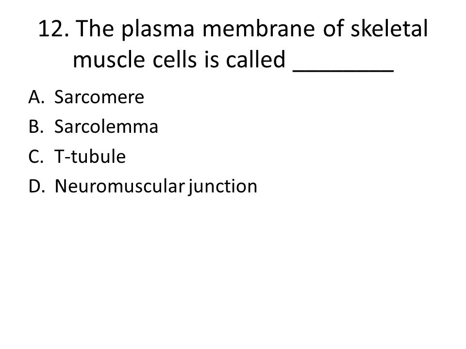 12. The plasma membrane of skeletal muscle cells is called ________
