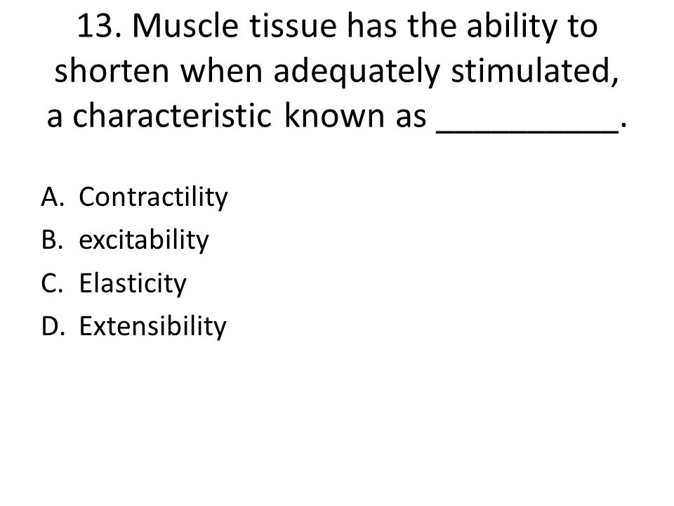 13. Muscle tissue has the ability to shorten when adequately stimulated, a characteristic known as __________.