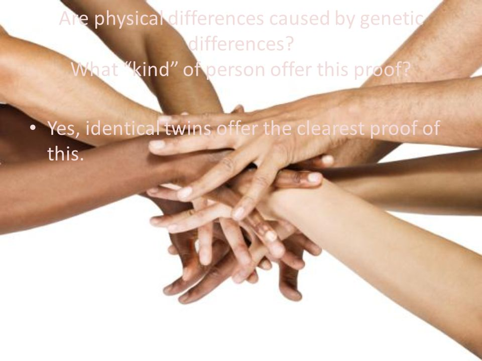 Are physical differences caused by genetic differences