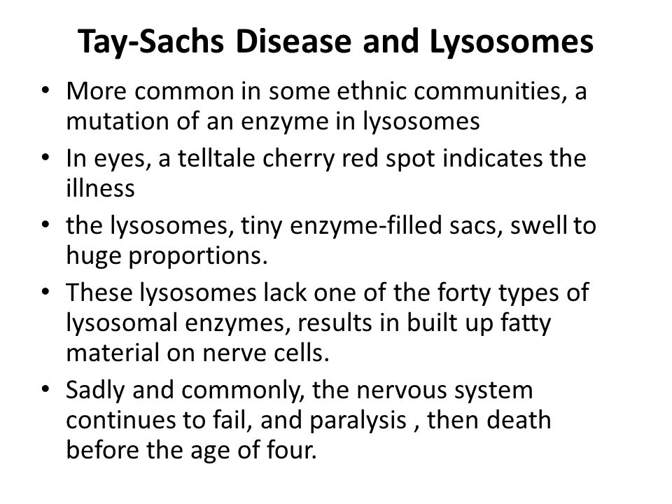 Tay-Sachs Disease and Lysosomes