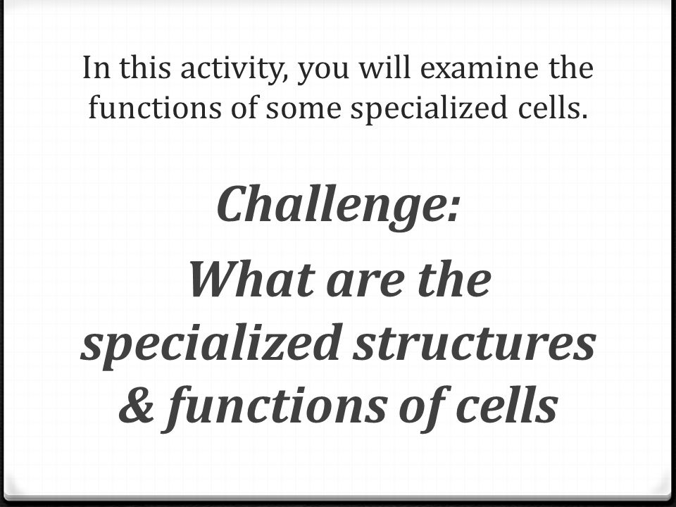 What are the specialized structures & functions of cells