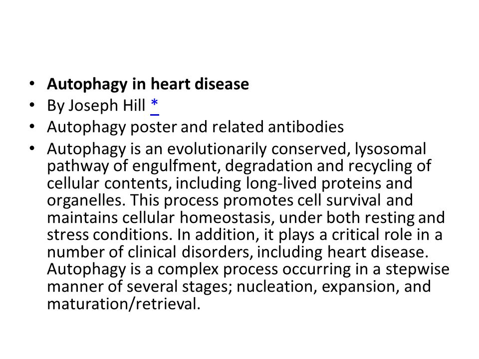 Autophagy in heart disease