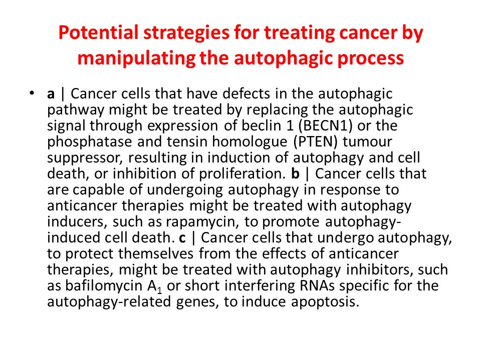 Potential strategies for treating cancer by manipulating the autophagic process
