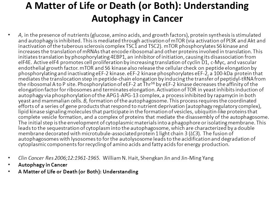 A Matter of Life or Death (or Both): Understanding Autophagy in Cancer