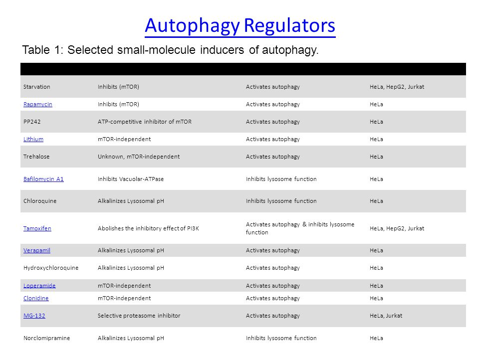 Autophagy Regulators Table 1: Selected small-molecule inducers of autophagy. Treatment. Target. Effect.