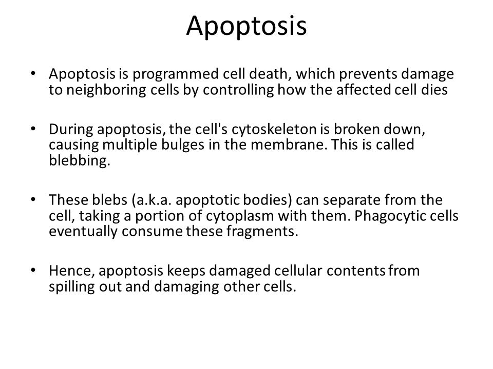 Apoptosis Apoptosis is programmed cell death, which prevents damage to neighboring cells by controlling how the affected cell dies.