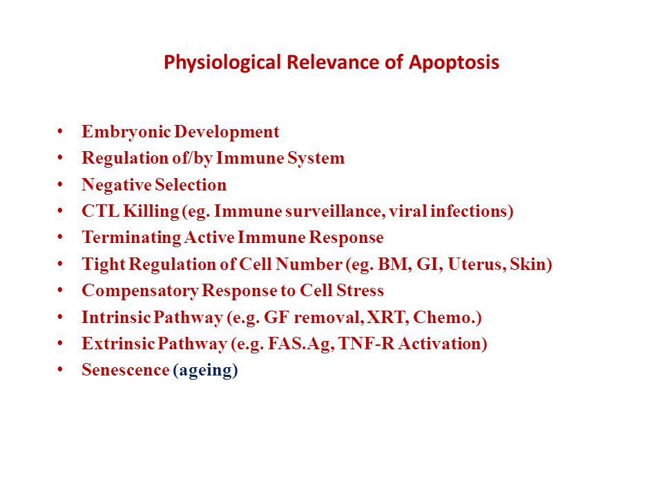 Physiological Relevance of Apoptosis