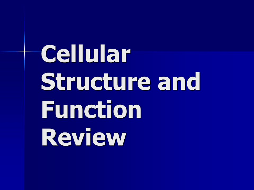Cellular Structure and Function Review
