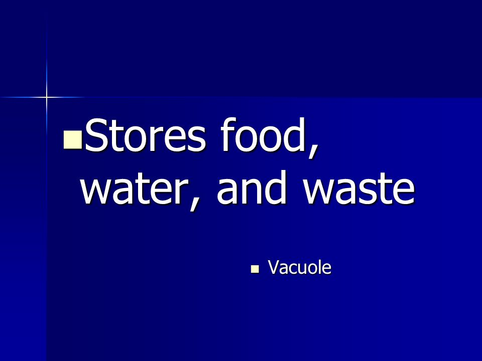 Stores food, water, and waste