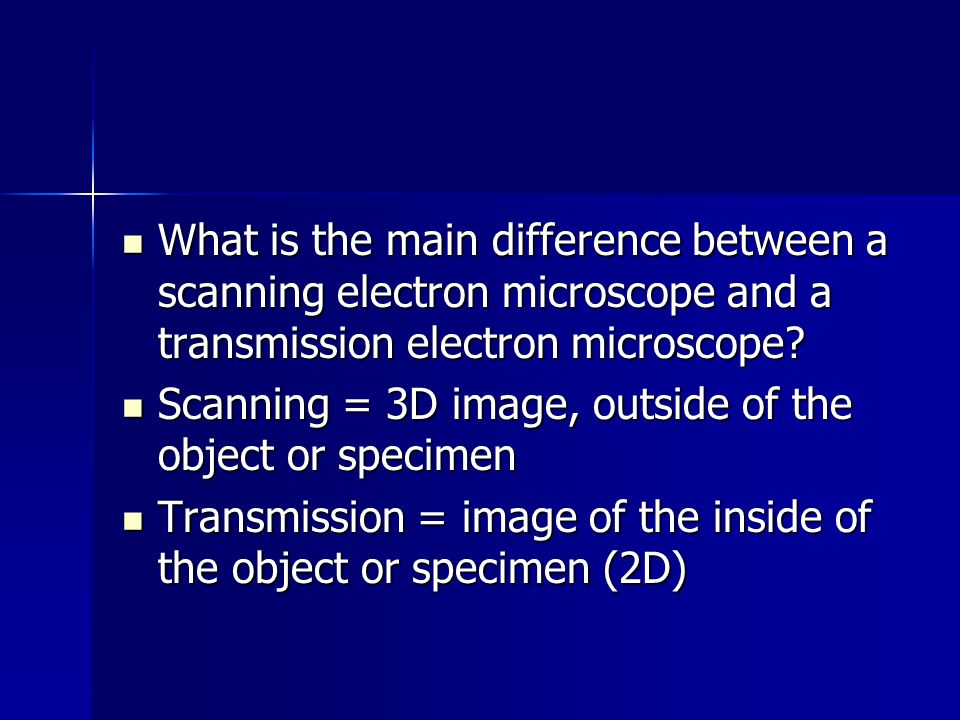 What is the main difference between a scanning electron microscope and a transmission electron microscope